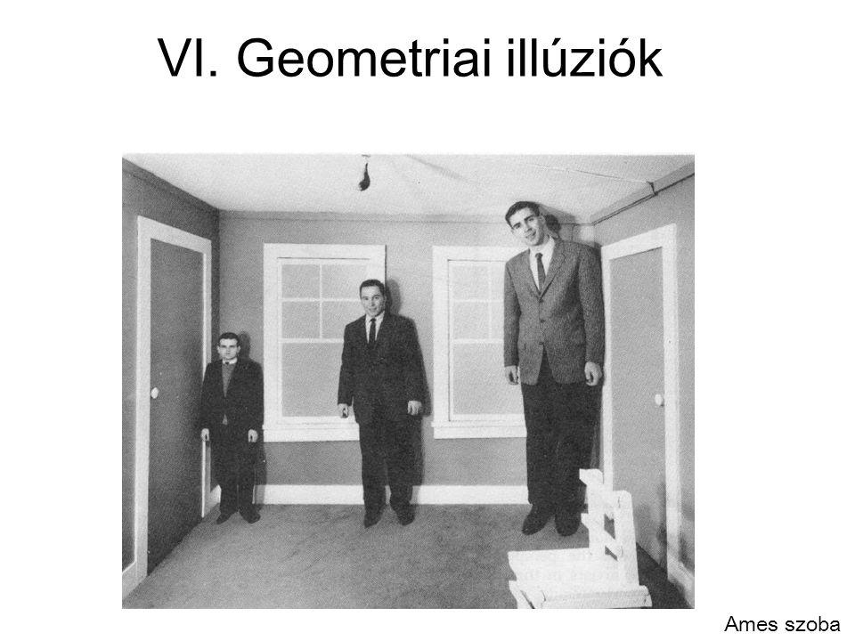 VI. Geometriai illúziók