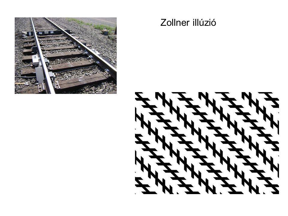 Zollner illúzió