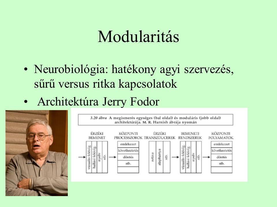 Modularitás Neurobiológia: hatékony agyi szervezés, sűrű versus ritka kapcsolatok.