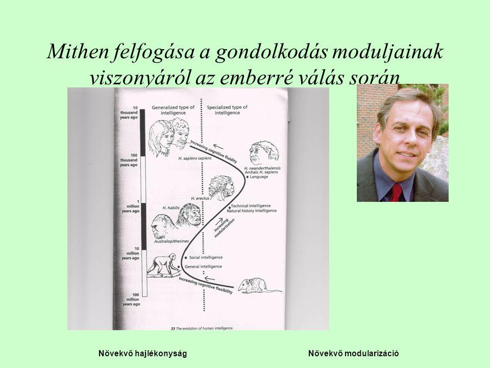 Mithen felfogása a gondolkodás moduljainak viszonyáról az emberré válás során
