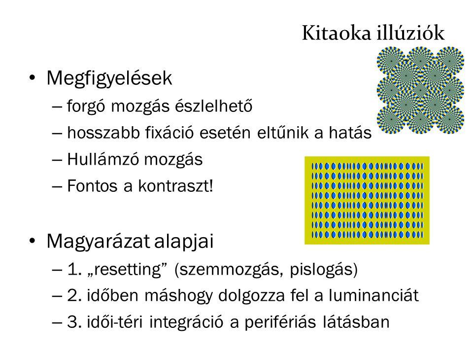 Kitaoka illúziók Megfigyelések Magyarázat alapjai