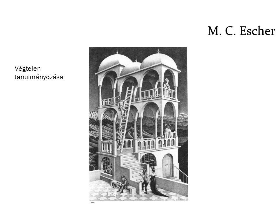 M. C. Escher Végtelen tanulmányozása