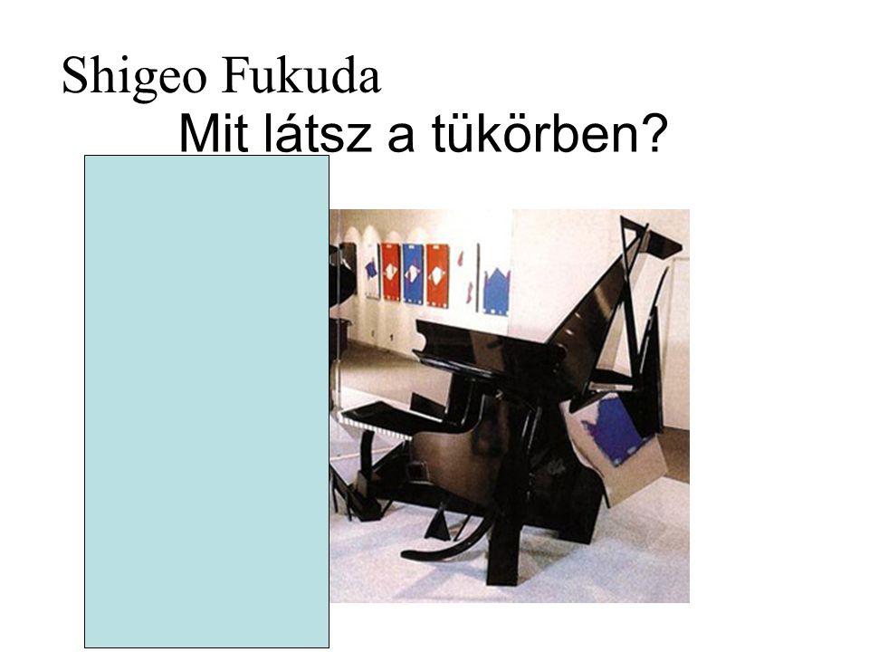 Shigeo Fukuda Mit látsz a tükörben
