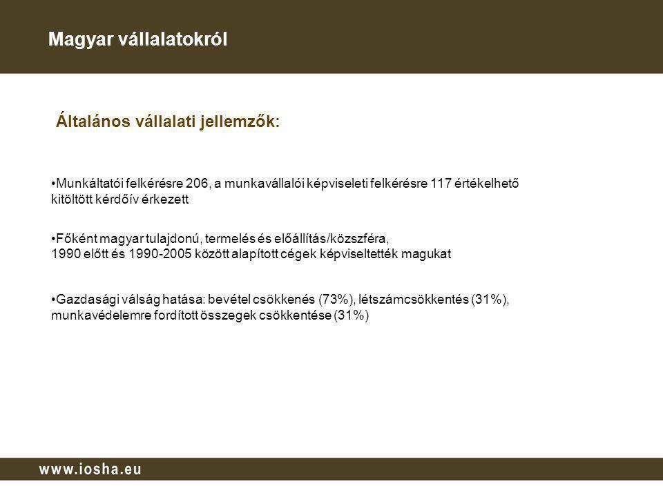 Magyar vállalatokról Általános vállalati jellemzők: