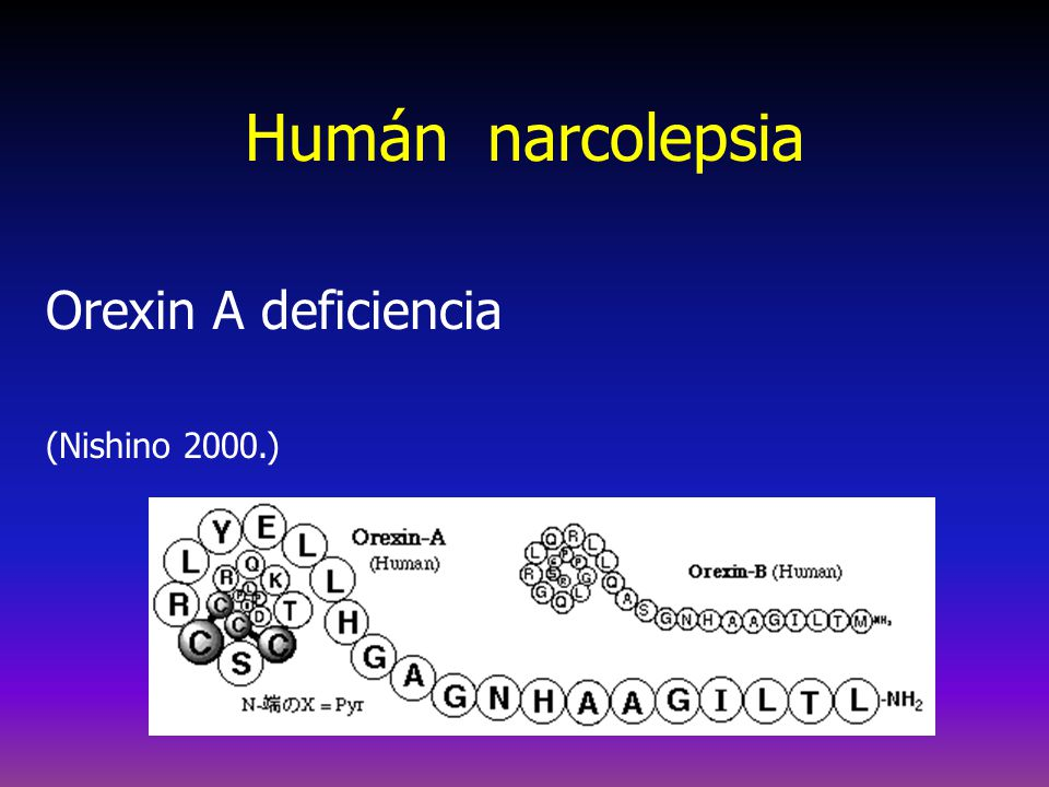 Humán narcolepsia Orexin A deficiencia (Nishino 2000.)