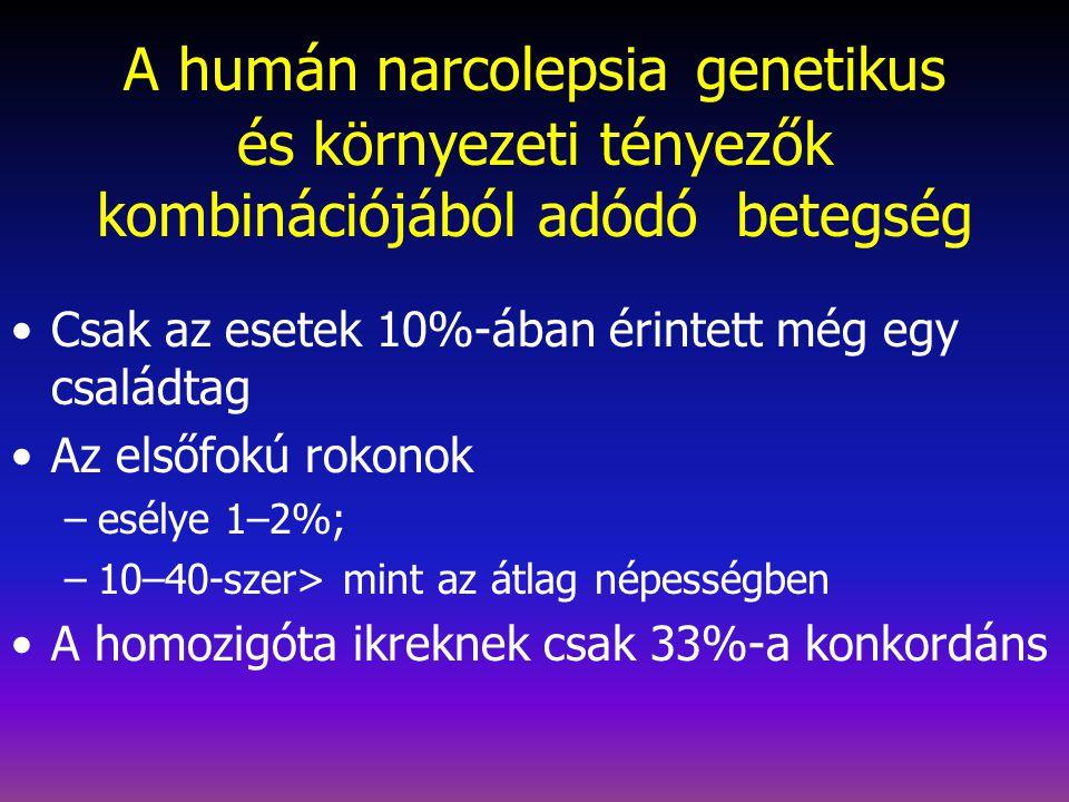 A humán narcolepsia genetikus és környezeti tényezők kombinációjából adódó betegség