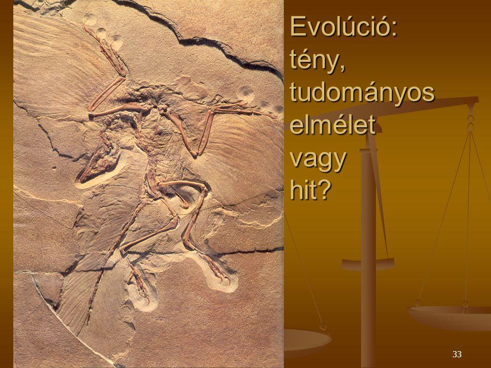 Evolúció: tény, tudományos elmélet vagy hit