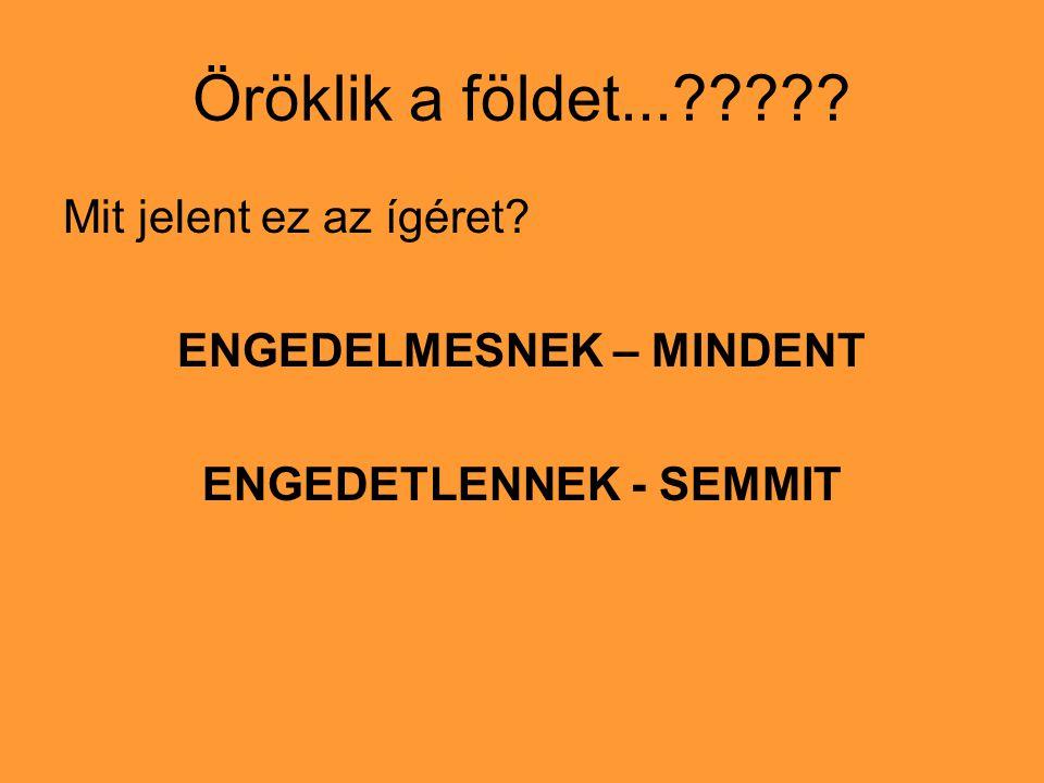 ENGEDELMESNEK – MINDENT ENGEDETLENNEK - SEMMIT