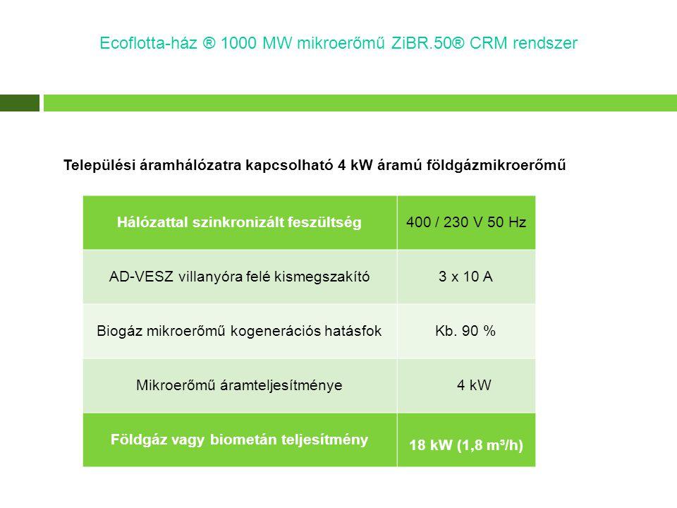 Hálózattal szinkronizált feszültség Földgáz vagy biometán teljesítmény