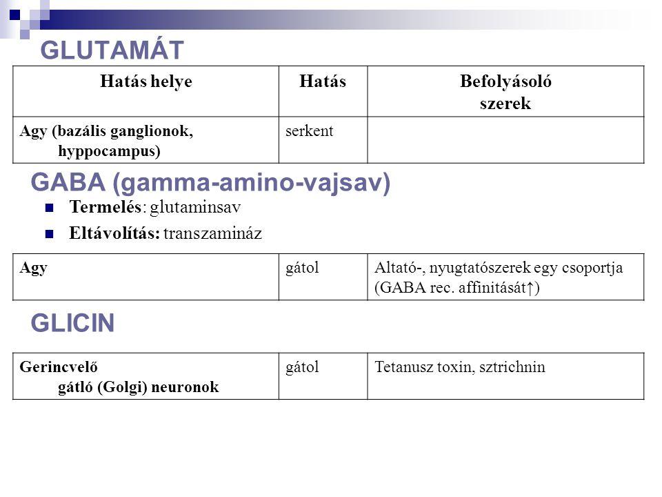GABA (gamma-amino-vajsav)