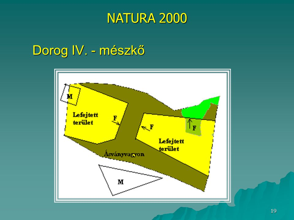 NATURA 2000 Dorog IV. - mészkő
