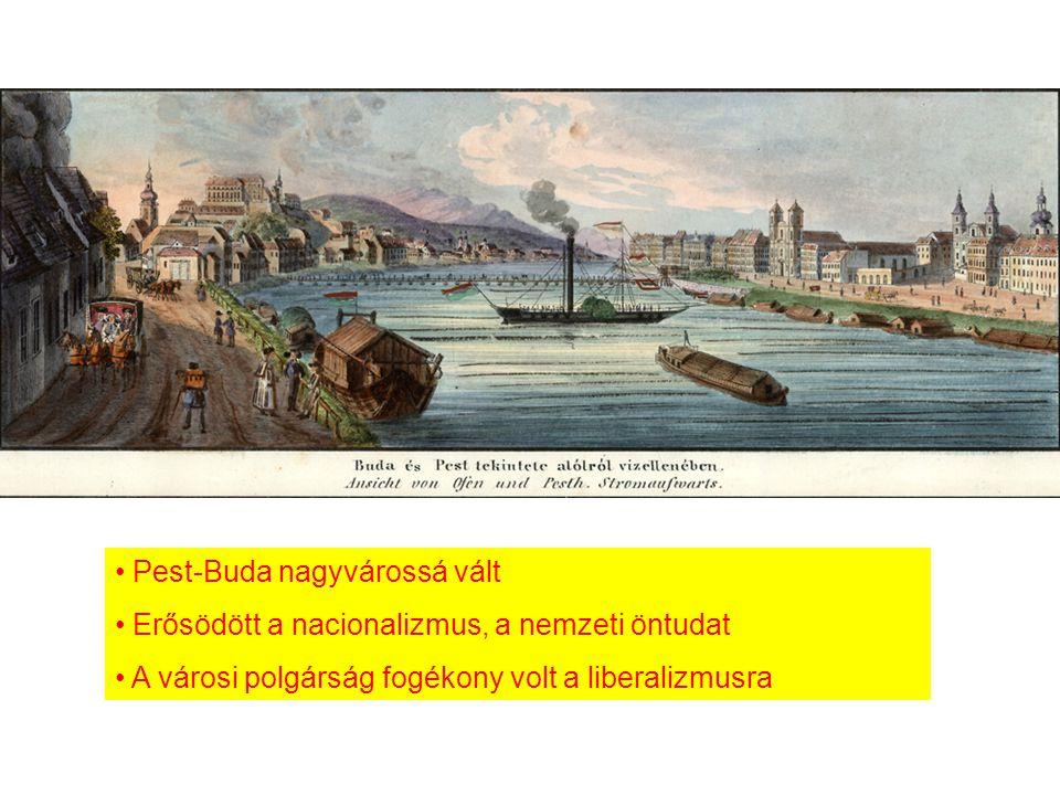 Pest-Buda nagyvárossá vált
