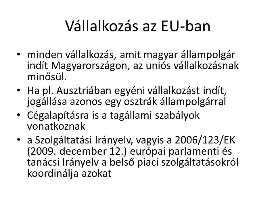 Vállalkozás az EU-ban minden vállalkozás, amit magyar állampolgár indít Magyarországon, az uniós vállalkozásnak minősül.