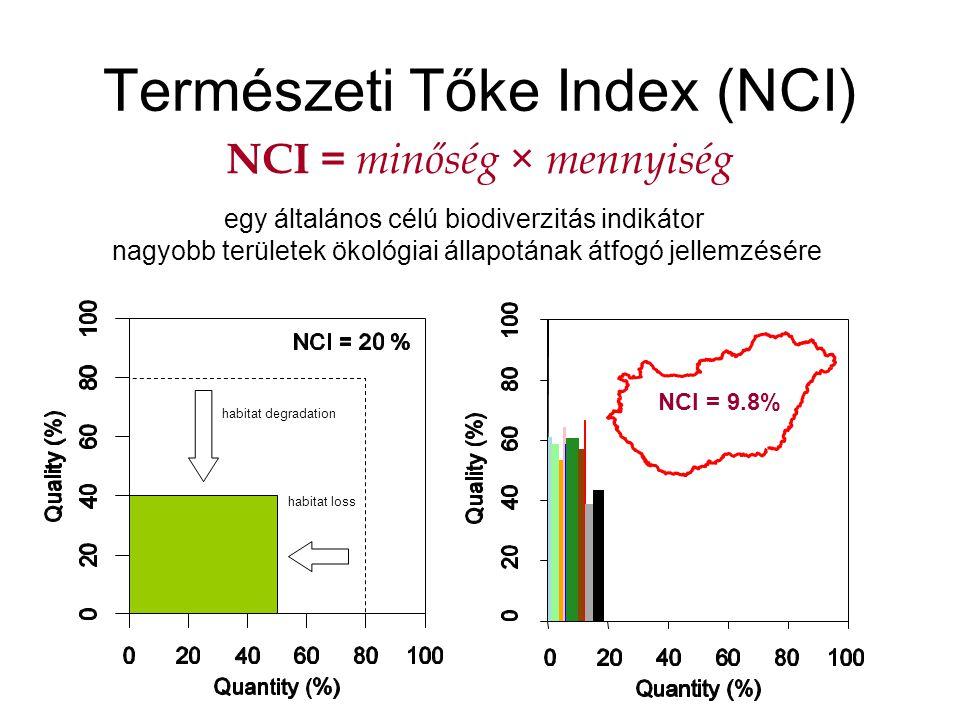 Természeti Tőke Index (NCI)