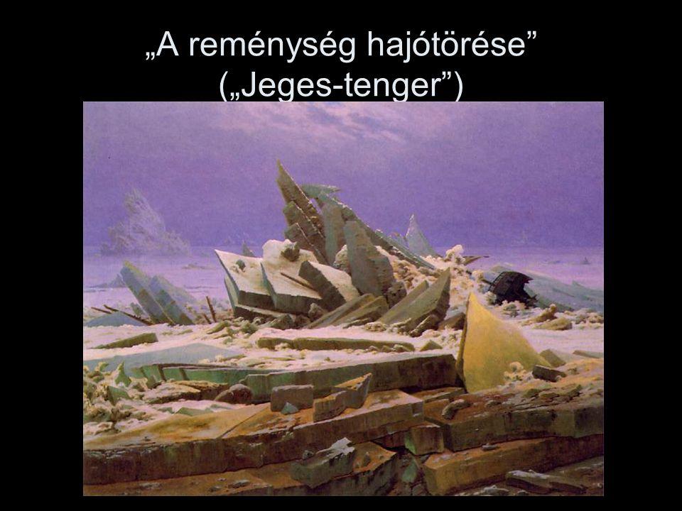 """""""A reménység hajótörése (""""Jeges-tenger )"""