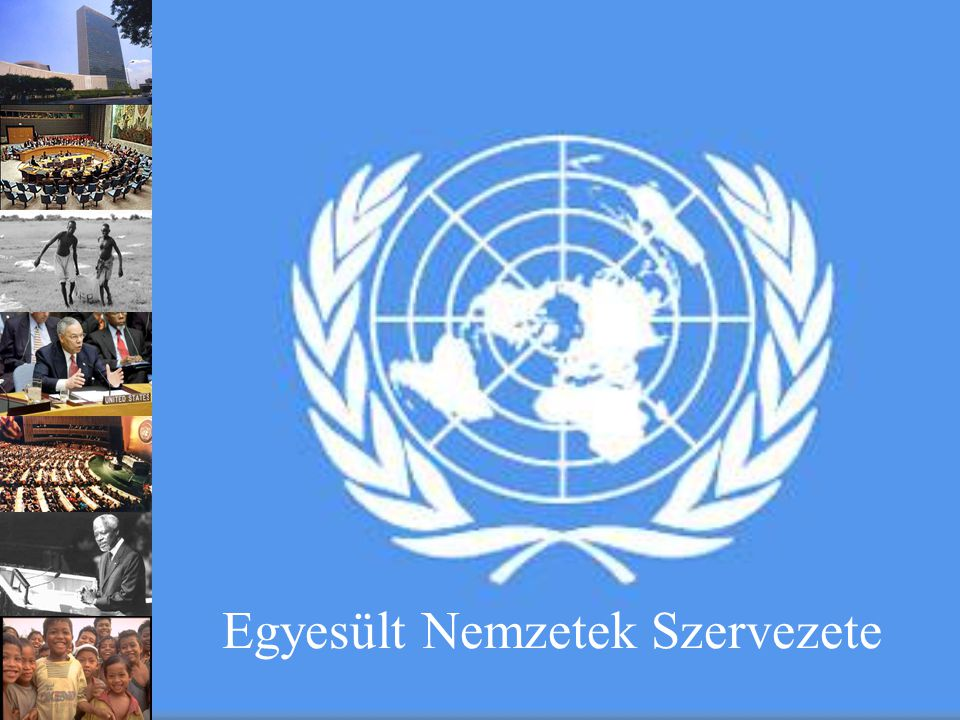Egyesült Nemzetek Szervezete