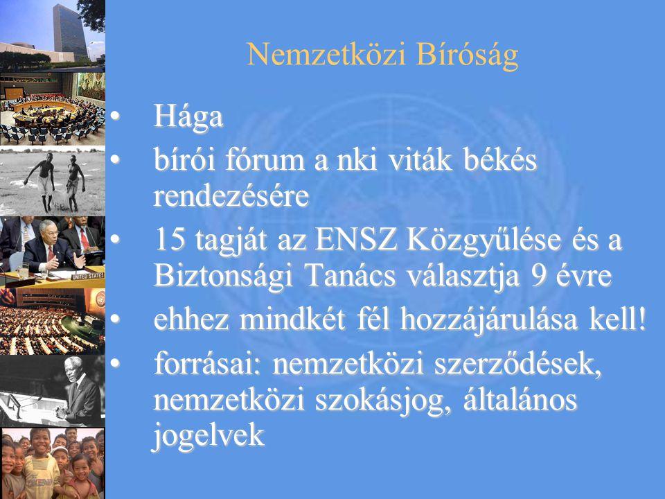 Nemzetközi Bíróság Hága. bírói fórum a nki viták békés rendezésére. 15 tagját az ENSZ Közgyűlése és a Biztonsági Tanács választja 9 évre.