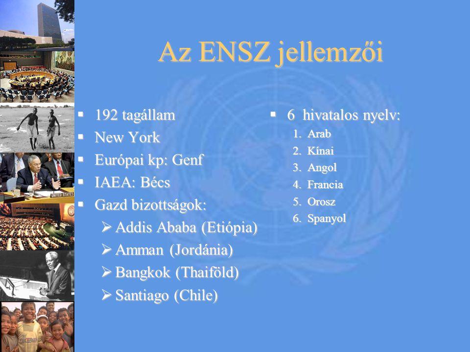 Az ENSZ jellemzői 192 tagállam New York Európai kp: Genf IAEA: Bécs