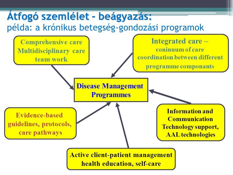 Átfogó szemlélet - beágyazás: példa: a krónikus betegség-gondozási programok
