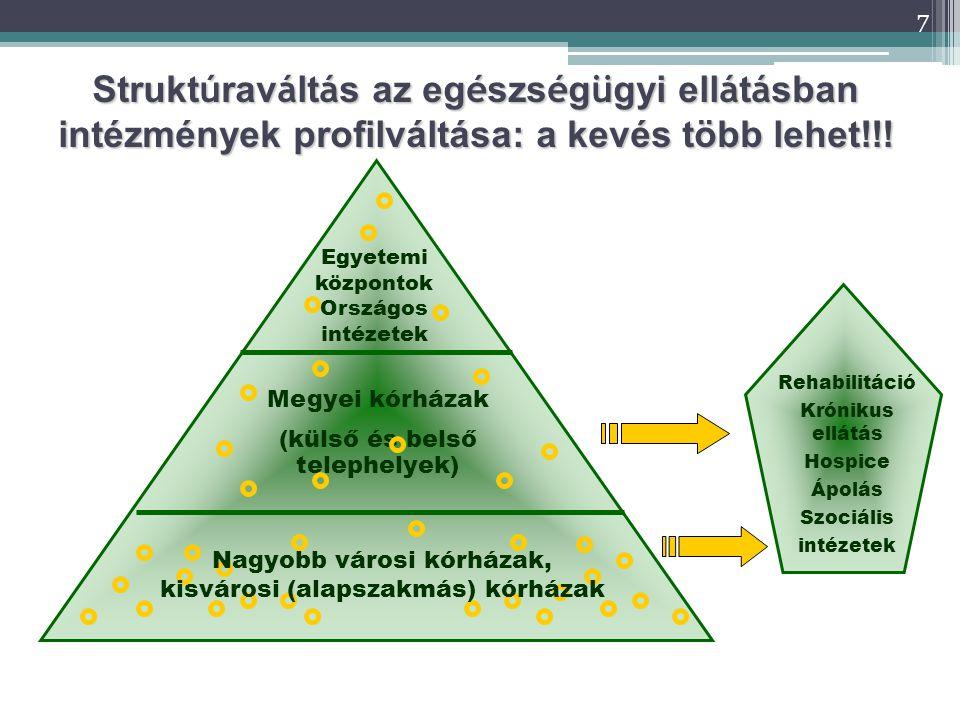 Struktúraváltás az egészségügyi ellátásban intézmények profilváltása: a kevés több lehet!!!