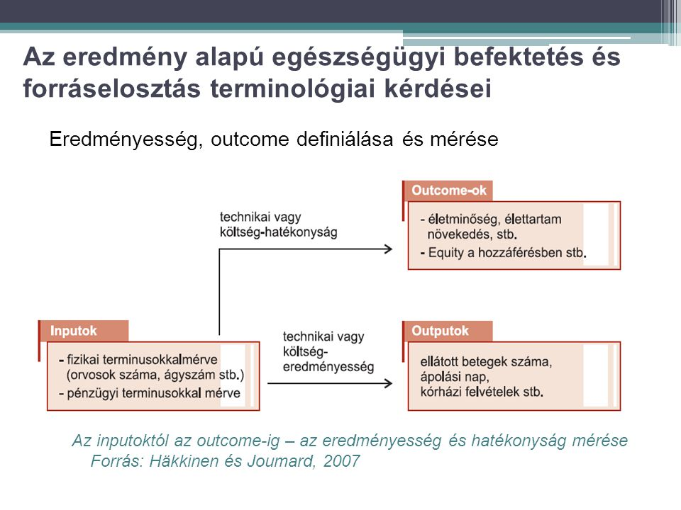 Az eredmény alapú egészségügyi befektetés és forráselosztás terminológiai kérdései