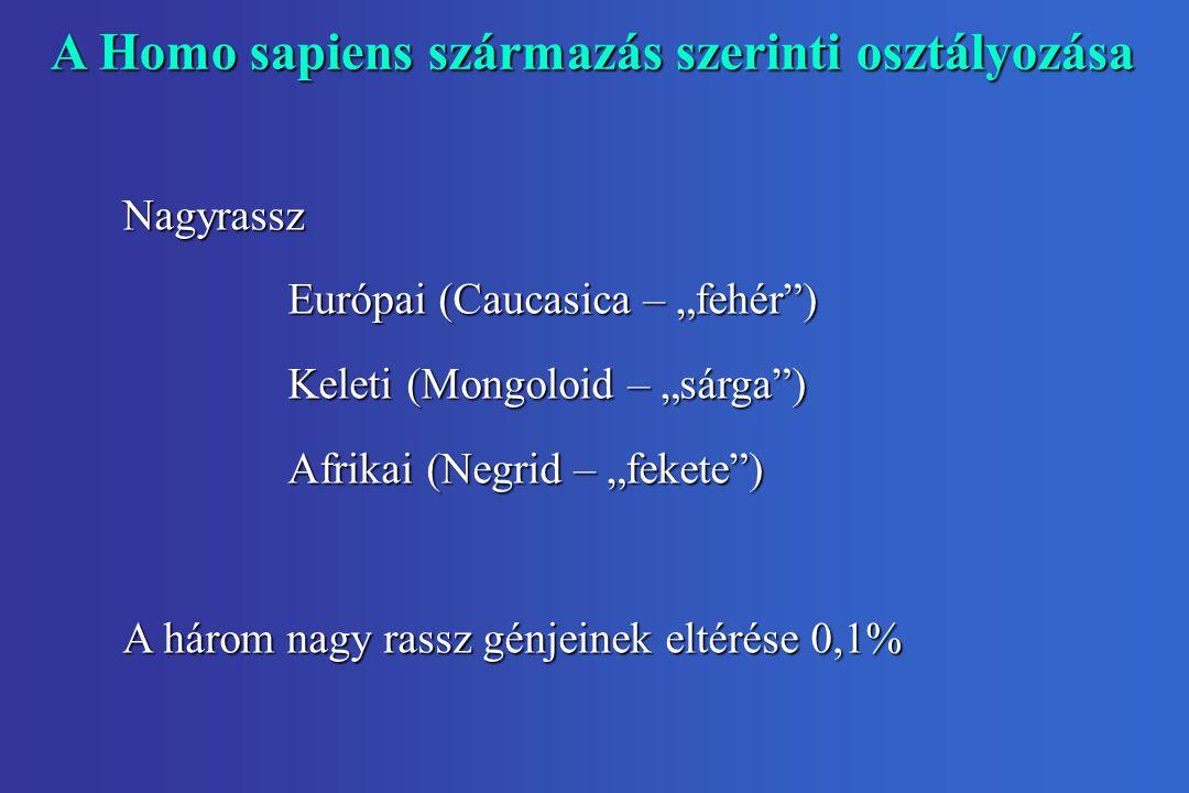 A Homo sapiens származás szerinti osztályozása