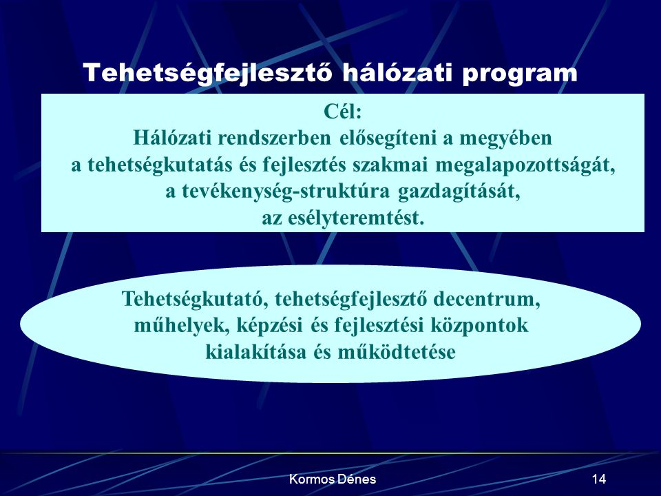 Tehetségfejlesztő hálózati program