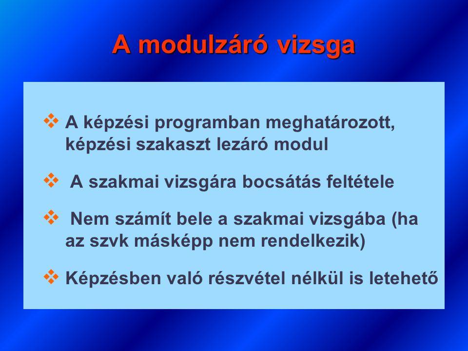 A modulzáró vizsga A képzési programban meghatározott, képzési szakaszt lezáró modul. A szakmai vizsgára bocsátás feltétele.