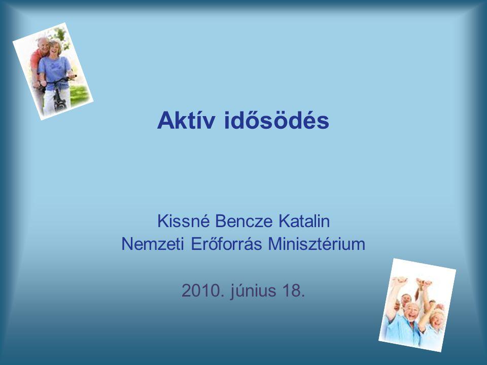 Kissné Bencze Katalin Nemzeti Erőforrás Minisztérium 2010. június 18.