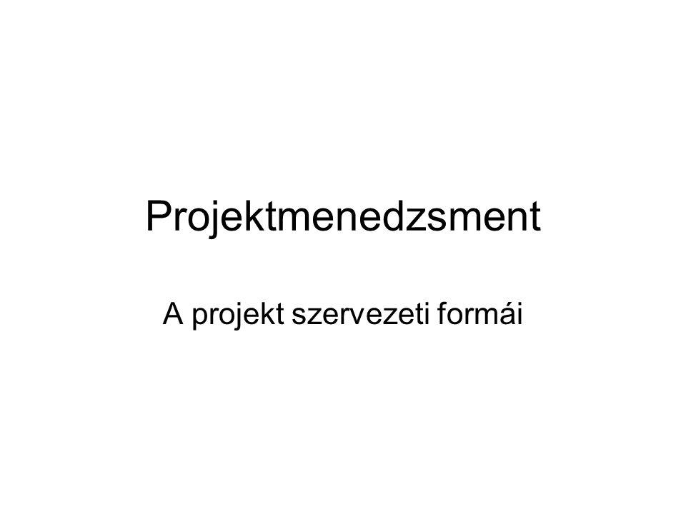 A projekt szervezeti formái