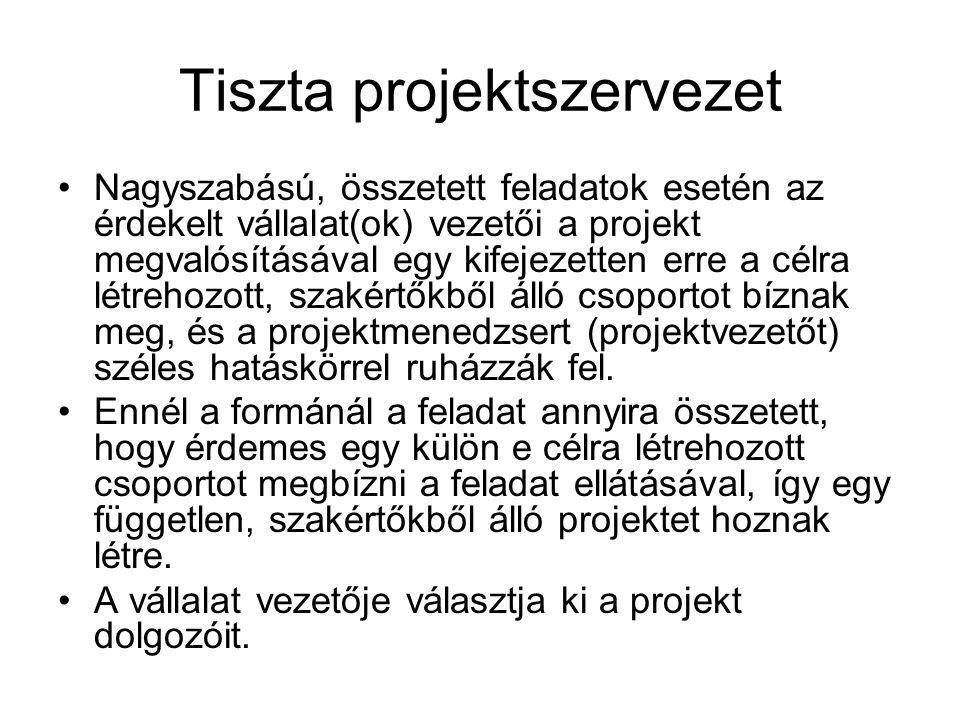 Tiszta projektszervezet