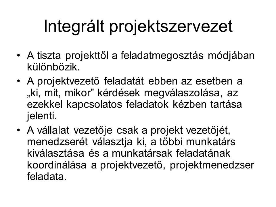 Integrált projektszervezet