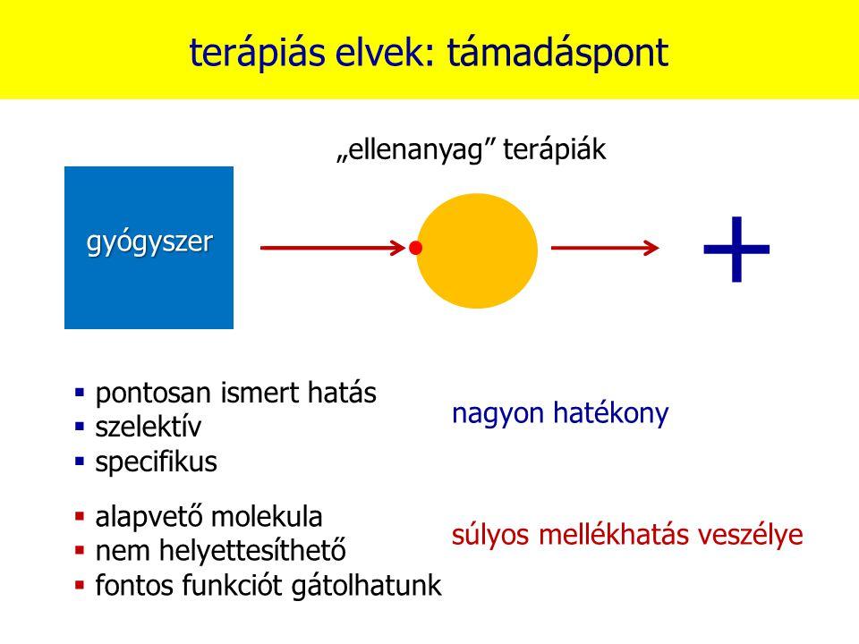 """+ terápiás elvek: támadáspont """"ellenanyag terápiák gyógyszer"""