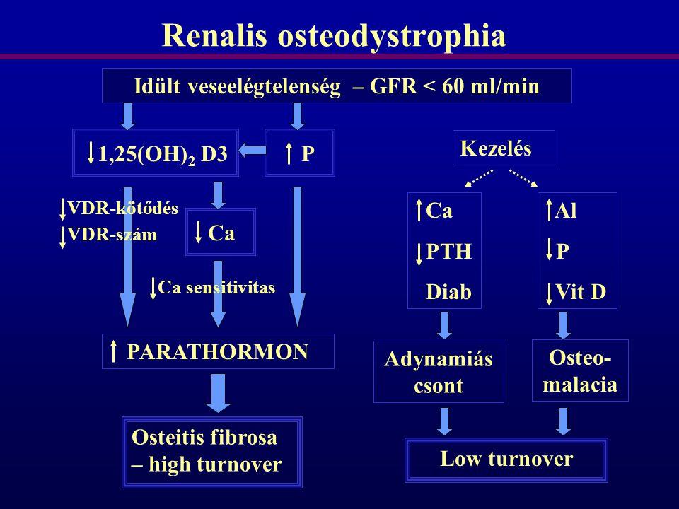 Renalis osteodystrophia