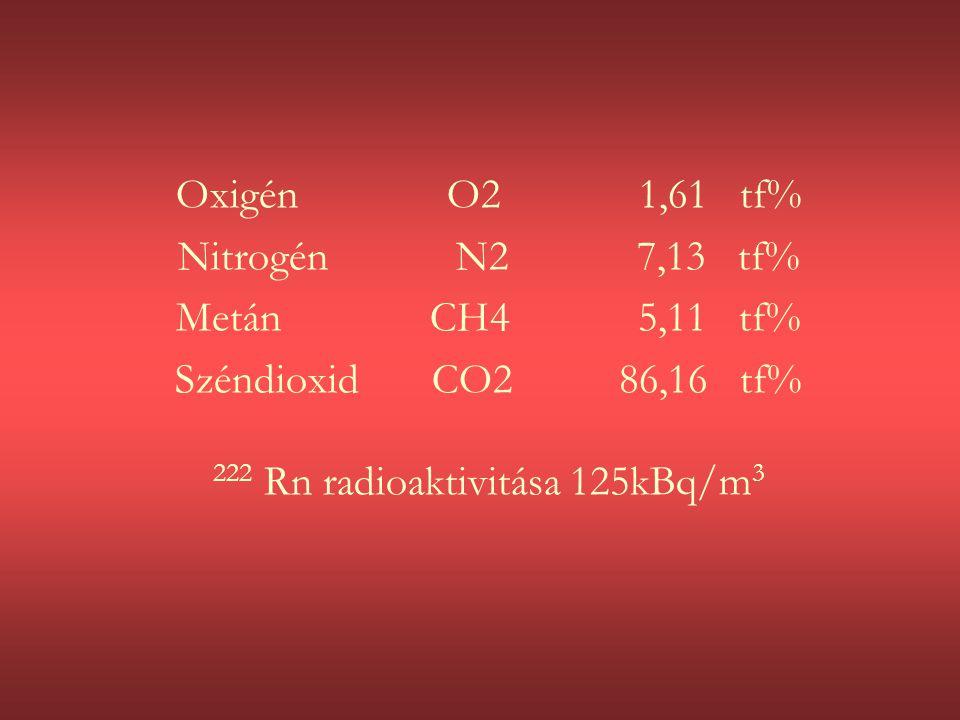 222 Rn radioaktivitása 125kBq/m3
