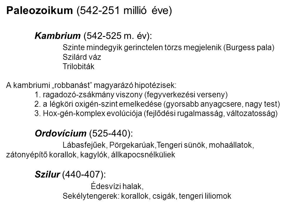Paleozoikum (542-251 millió éve)