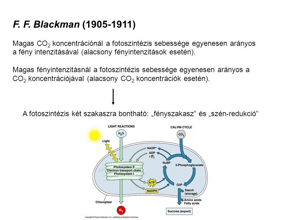 F. F. Blackman (1905-1911)