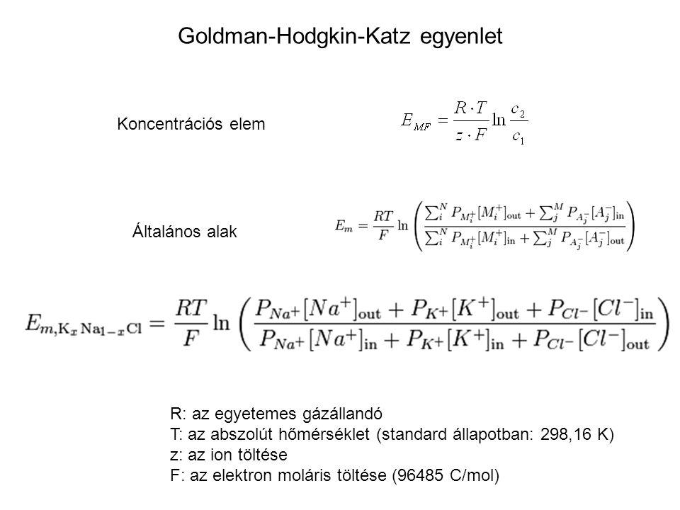 Goldman-Hodgkin-Katz egyenlet