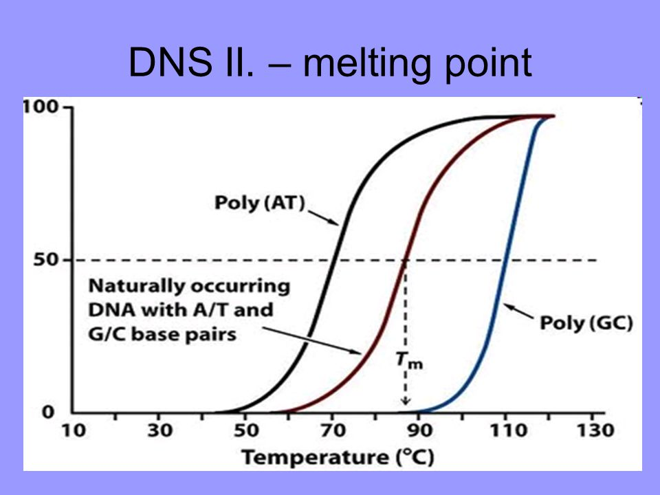 DNS II. – melting point