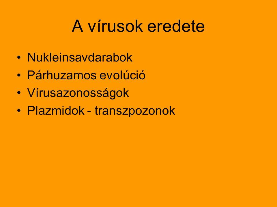 A vírusok eredete Nukleinsavdarabok Párhuzamos evolúció