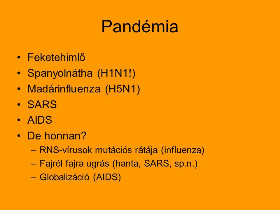 Pandémia Feketehimlő Spanyolnátha (H1N1!) Madárinfluenza (H5N1) SARS