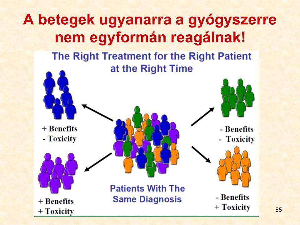 A betegek ugyanarra a gyógyszerre nem egyformán reagálnak!