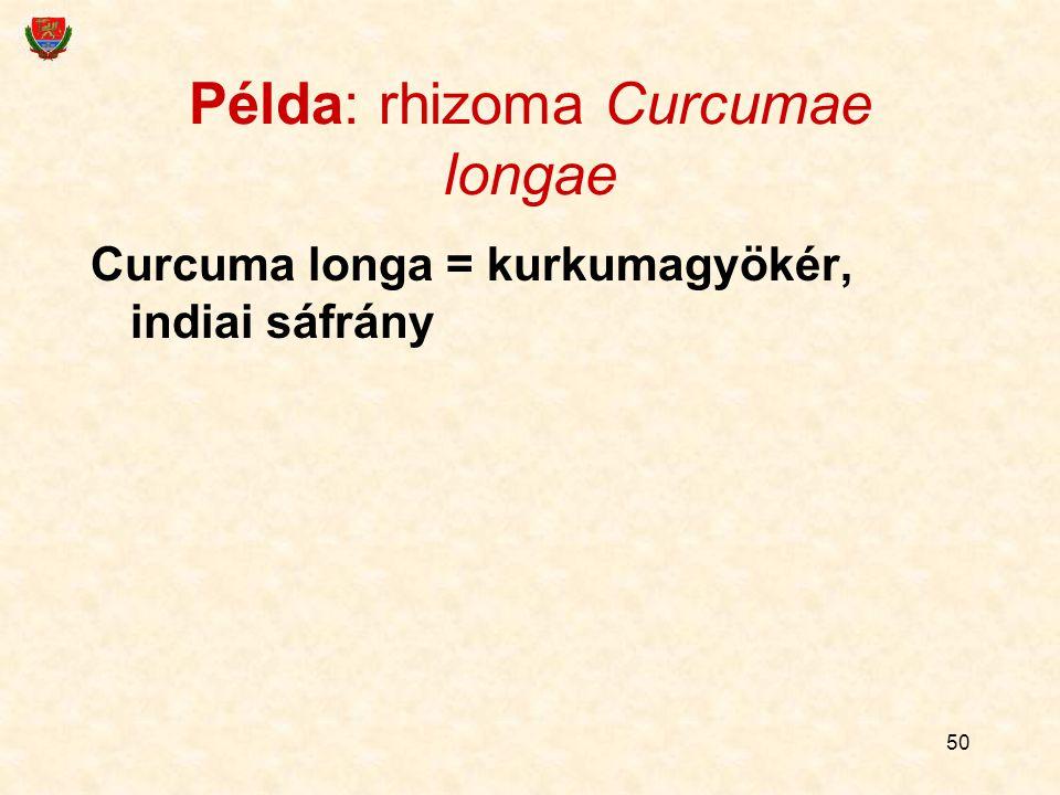 Példa: rhizoma Curcumae longae