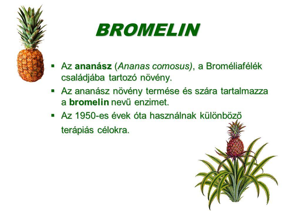 BROMELIN Az ananász (Ananas comosus), a Broméliafélék családjába tartozó növény.