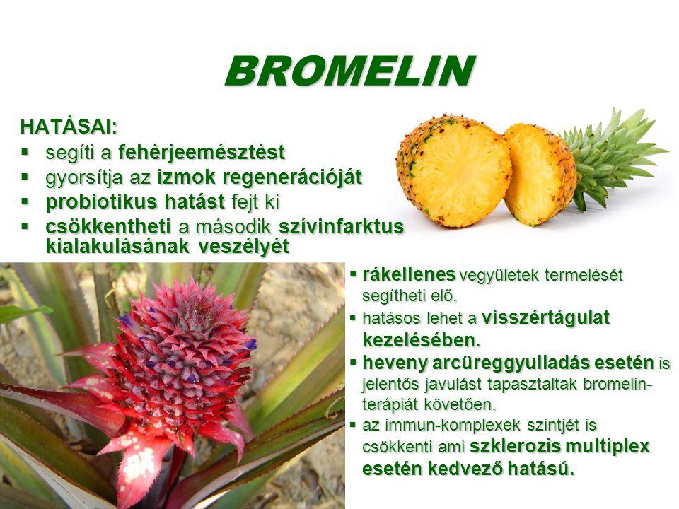 BROMELIN HATÁSAI: segíti a fehérjeemésztést