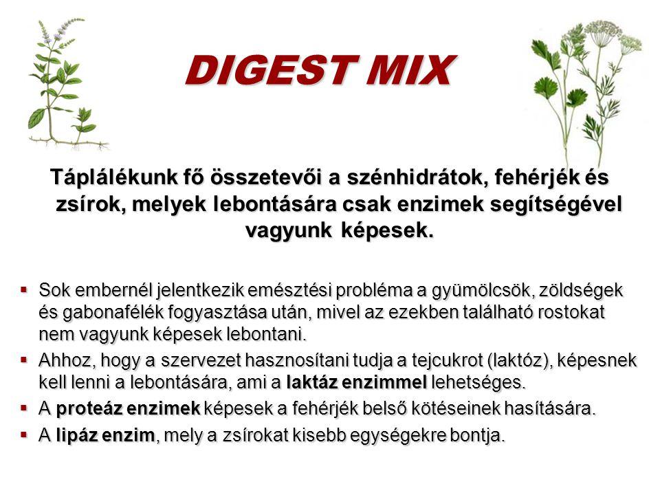 DIGEST MIX Táplálékunk fő összetevői a szénhidrátok, fehérjék és zsírok, melyek lebontására csak enzimek segítségével vagyunk képesek.
