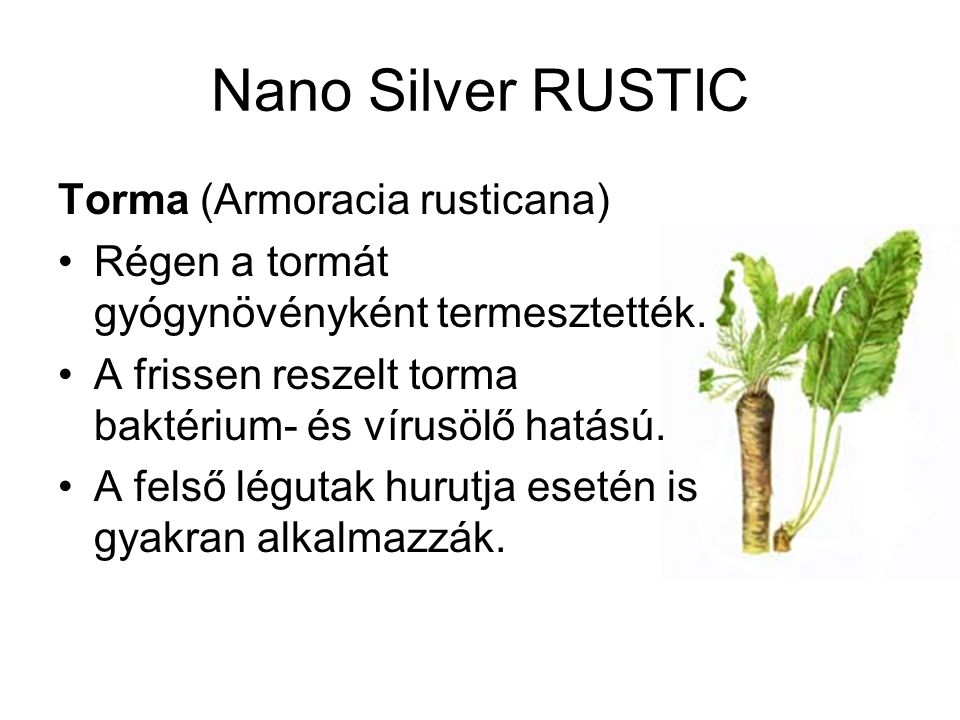 Nano Silver RUSTIC Torma (Armoracia rusticana)
