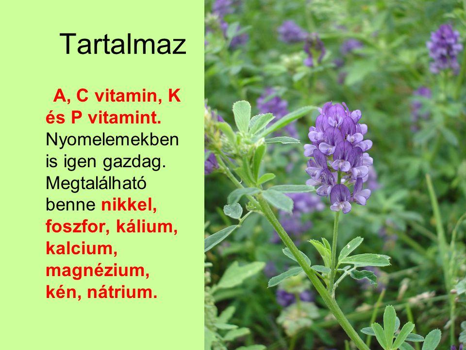 Tartalmaz A, C vitamin, K és P vitamint. Nyomelemekben is igen gazdag.