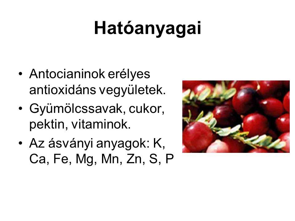 Hatóanyagai Antocianinok erélyes antioxidáns vegyületek.