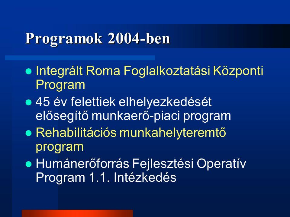 Programok 2004-ben Integrált Roma Foglalkoztatási Központi Program
